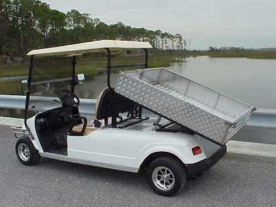 CitEcar Electro Neighborhood Buddy 2 Passenger Utility Deluxe Street Legal Golf Cart