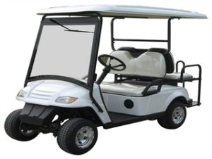 CitEcar Electro Neighborhood Buddy 4 Passenger (Back to Back) Street Legal Golf Cart