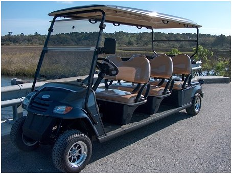 CitEcar 6 Passenger Golf Cart